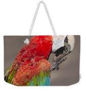 Scarlet Macaw - 2 Weekender Tote Bag
