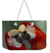 Scarlet Macaw Ara Macao Pair Kissing Weekender Tote Bag