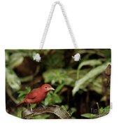 Scarlet Tanager In Costa Rica Weekender Tote Bag