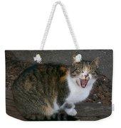 Scary Kitty Weekender Tote Bag