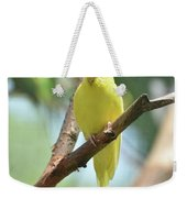 Scenic View Of An Adorable Yellow Parakeet Weekender Tote Bag