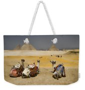 Scenic View Of The Giza Pyramids With Sitting Camels Weekender Tote Bag