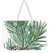 Scots Pine, Pinus Silvestris Weekender Tote Bag