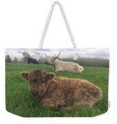 Scottish Highland Calf Weekender Tote Bag
