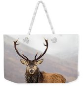 Scottish Red Deer Stag - Glencoe Weekender Tote Bag