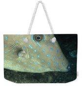Scrawled Filefish Profile, Alutera Weekender Tote Bag