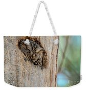 Screech Owl In A Tree Weekender Tote Bag