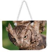 Screech Owl In Flight Weekender Tote Bag