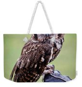 Screech Owl Perched Weekender Tote Bag by Athena Mckinzie