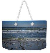 Sea Birds Feeding On Florida Coast Dsc00473_16 Weekender Tote Bag