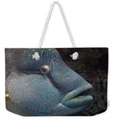 Sea Life 19 Weekender Tote Bag