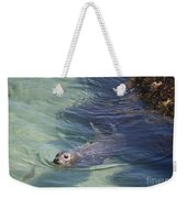 Sea Lion In Clear Blue Waters Weekender Tote Bag