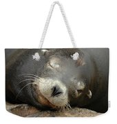 Sea Lion In San Francisco Weekender Tote Bag