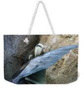 Sea Lion Itch Weekender Tote Bag