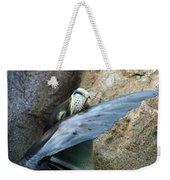 Sea Lion Itch Weekender Tote Bag