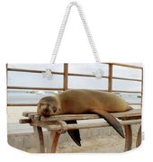 sea lion on a bench in Puerto Ayora, Santa Cruz Island, Galapagos Weekender Tote Bag