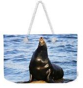 Sea Lion Sing Weekender Tote Bag