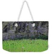 Sea Of Cattails Weekender Tote Bag