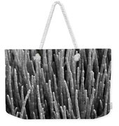 Sea Pickle Weekender Tote Bag