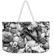 Sea Shells - Nassau, Bahamas Weekender Tote Bag