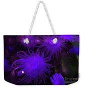 Sea Urchin 8 Weekender Tote Bag