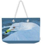 Seagull Departing Close-up Weekender Tote Bag