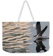 Seagull Fun Weekender Tote Bag
