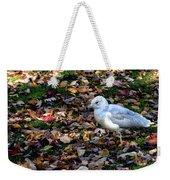 Seagull In The Fallen Leaves Weekender Tote Bag