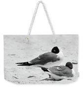 Seagull Nap Time Weekender Tote Bag