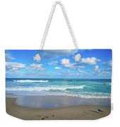 Seagull On The Atlantic Shore Weekender Tote Bag
