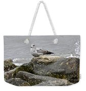 Seagull Sitting On Jetty Weekender Tote Bag