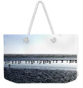Seagulls On A Sandbar Weekender Tote Bag