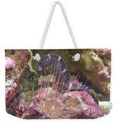 Seahorse1 Weekender Tote Bag