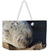 Seal Dream Weekender Tote Bag