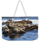 Seal Island Weekender Tote Bag
