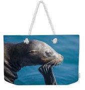 Seal Weekender Tote Bag
