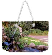 Seal Statue Fountain 1 Weekender Tote Bag