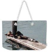 Seals At Oceanside Weekender Tote Bag