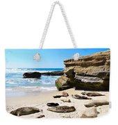 Seals Siesta On La Jolla Beach Weekender Tote Bag