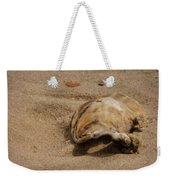 Seashells At The Seashore Weekender Tote Bag