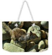 Seaside Ground Squirrel Weekender Tote Bag
