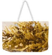 Seaweed In The Sand Weekender Tote Bag