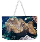 Seaweed Weekender Tote Bag by Svetlana Sewell