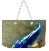 Secrets Of The Wild Koi 18 Weekender Tote Bag