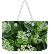 Sedum Pre-bloom Weekender Tote Bag