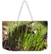 Seedlings Weekender Tote Bag