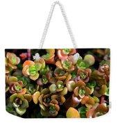 Seeing Succulents Weekender Tote Bag