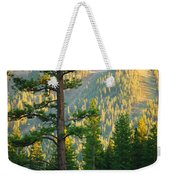 Seeing The Forest Through The Tree Weekender Tote Bag