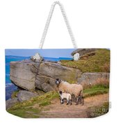 Seep And Lamb Weekender Tote Bag