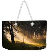 September Impressions Weekender Tote Bag by Rosario Piazza